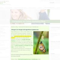Beispiel Kompetenzvermittlung durch Online-Marketing-Blog.